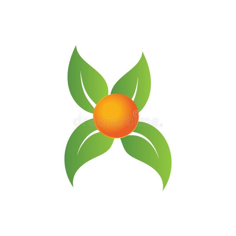 Leaf vector logo, Elements for eco and bio logos vector illustration