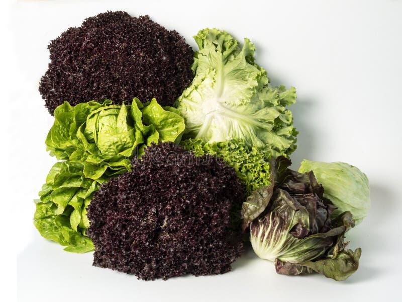 Leaf Vegetable, Vegetable, Vegetarian Food, Lettuce Free Public Domain Cc0 Image