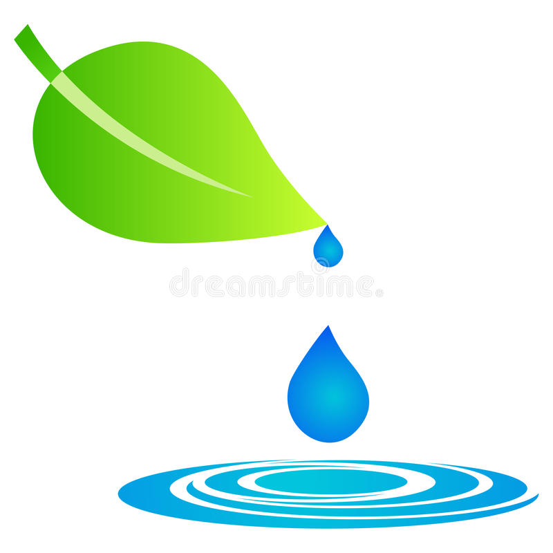 Leaf with water drops royalty free illustration