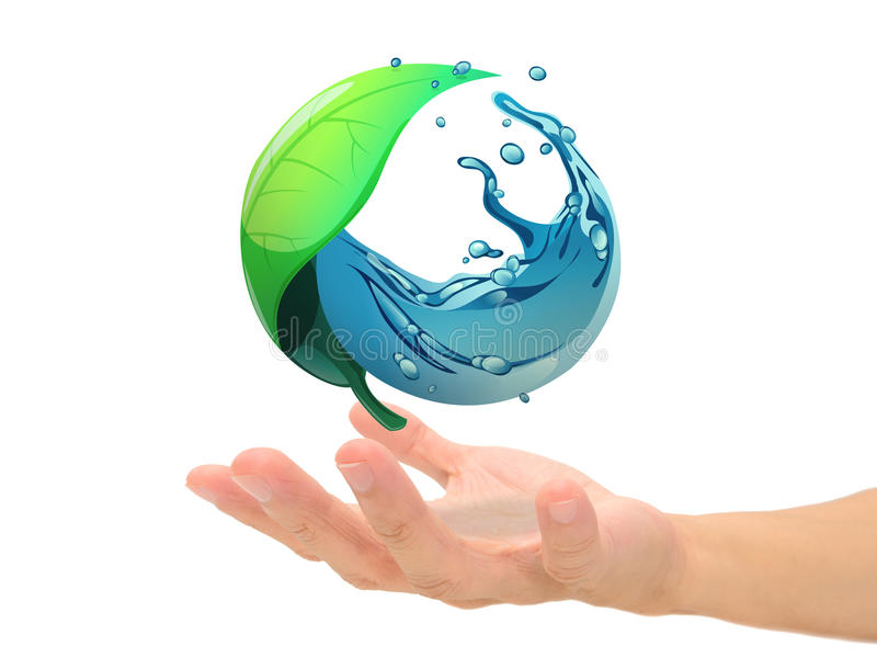 Download Leaf and water on hand stock photo. Image of protect - 32144494