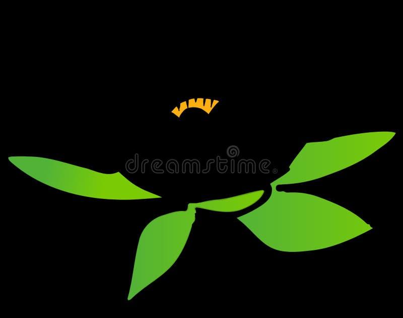 Leaf, Yellow, Flora, Plant stock photos
