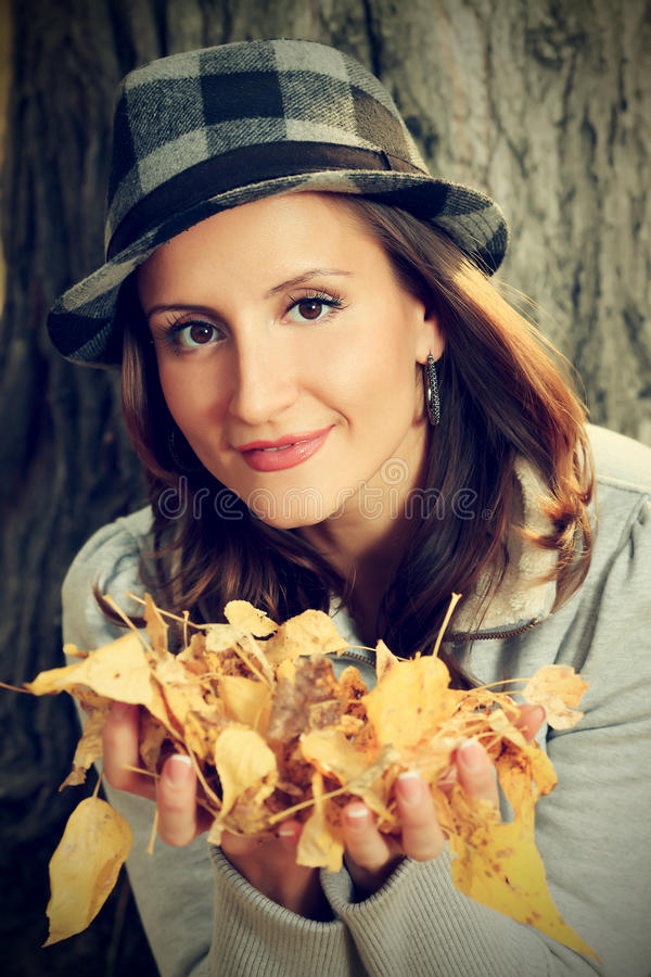 Leafage Autumn Royalty Free Stock Photography