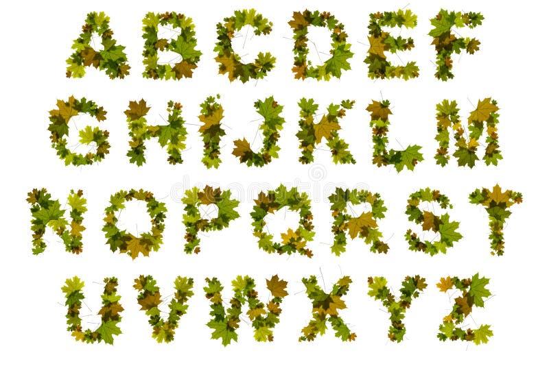 leafbokstäver arkivfoton