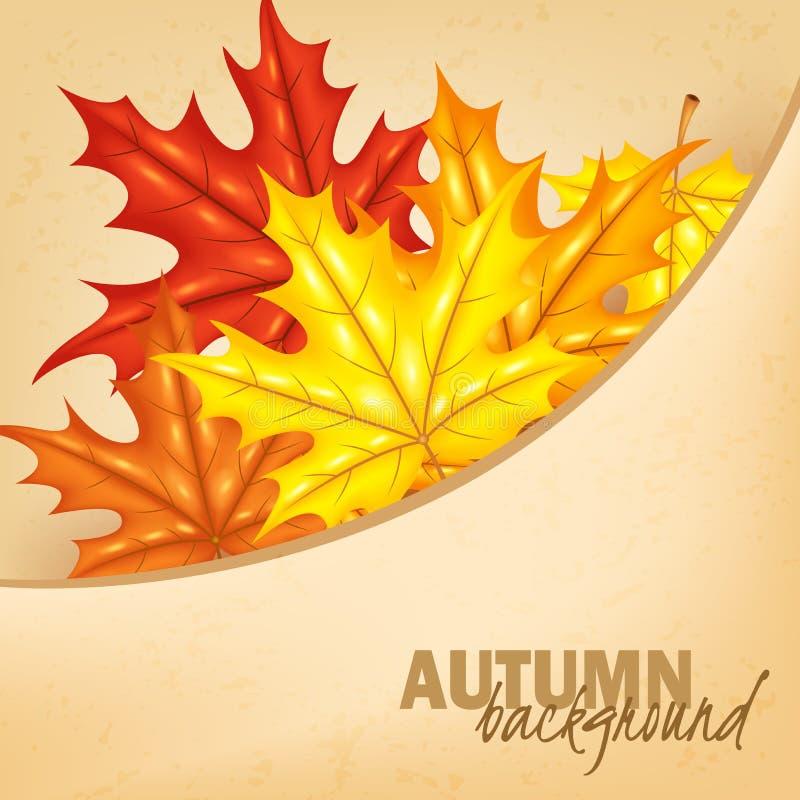 leafen för ljusa färger för filialen för hösten låter vara den bakgrund backlit guld- lönn för suntree för orange red yellow stock illustrationer
