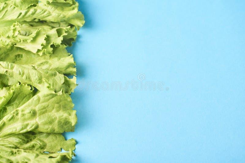 Leafes verdes frescos de la lechuga aislados en la turquesa fotografía de archivo libre de regalías