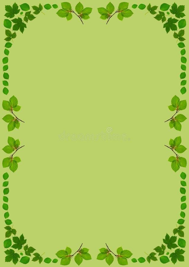 LeafFrameDinGreen illustration de vecteur
