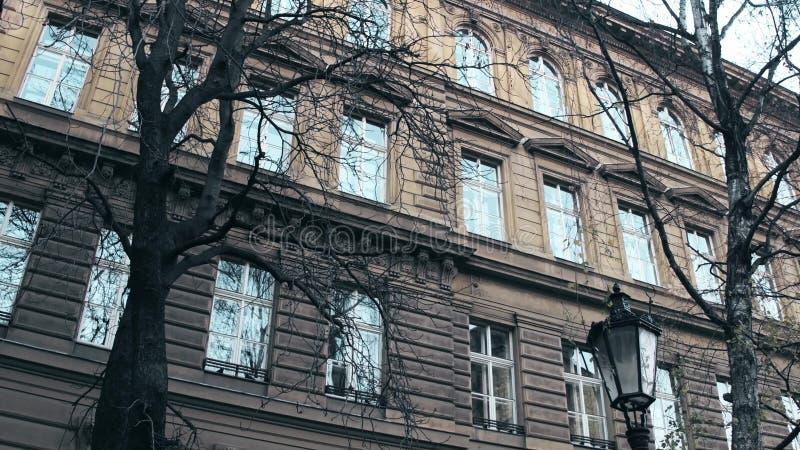 Leafless bomen tegen het klassieke Europese gebouw, laag hoekschot stock foto