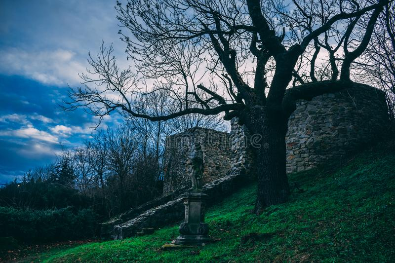 Leafless Tree Beside Gray Concrete Statue royalty free stock images