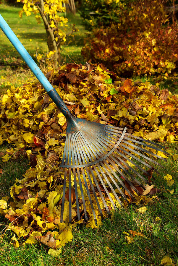 Leafs rake 03 royalty free stock images