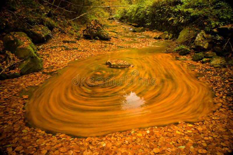 Download Leafs on the river stock photo. Image of stone, green - 11331764