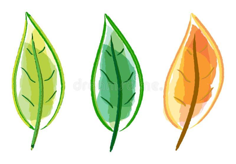 leafset stock illustrationer