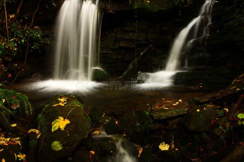 leafvattenfall arkivfoton