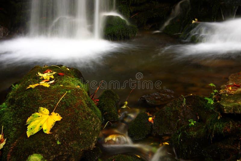 leafvattenfall royaltyfria foton