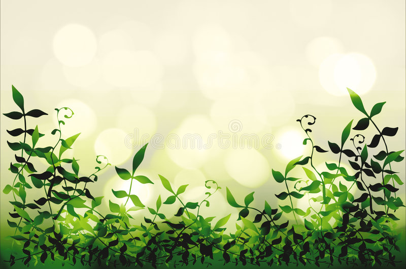 Download Leafy border stock illustration. Image of nature, natural - 6693922