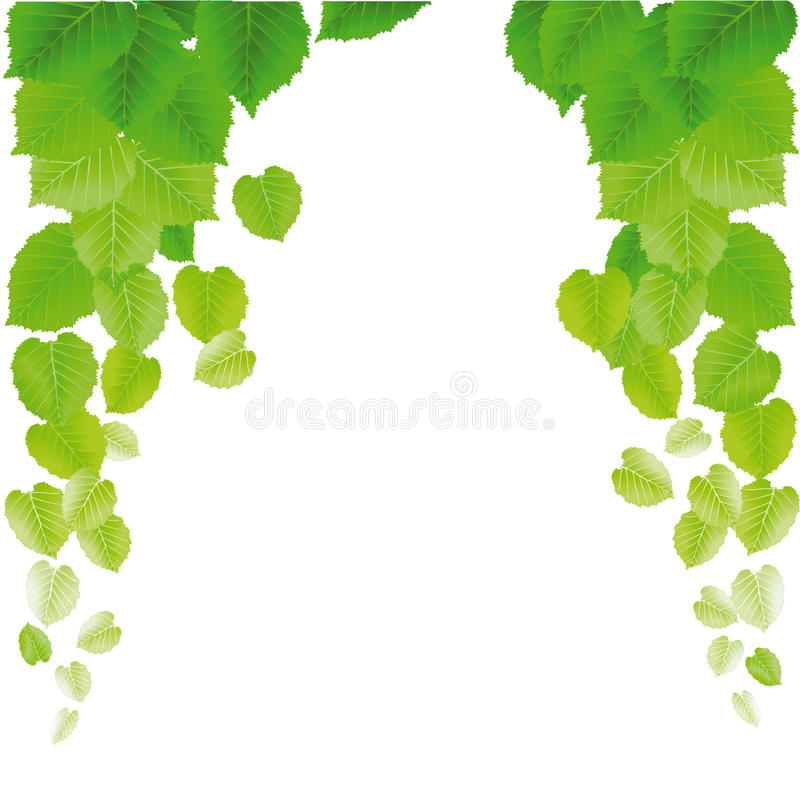 Download Leafy Green Background Royalty Free Stock Photo - Image: 25443555