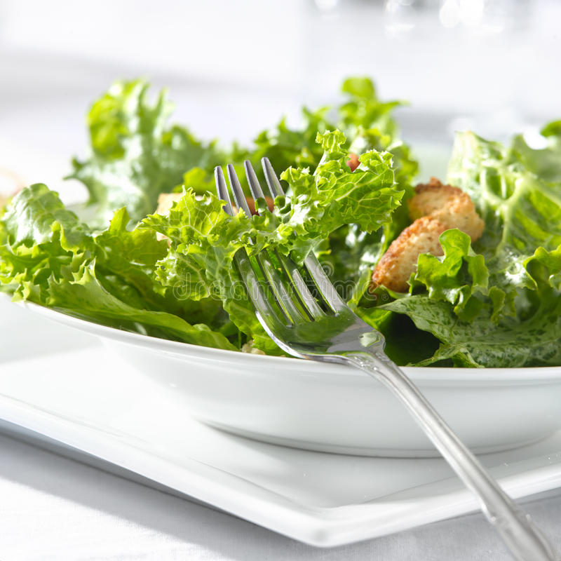 Download Leafy Green Salad With Croutons And Fork Royalty Free Stock Photo - Image: 16979865