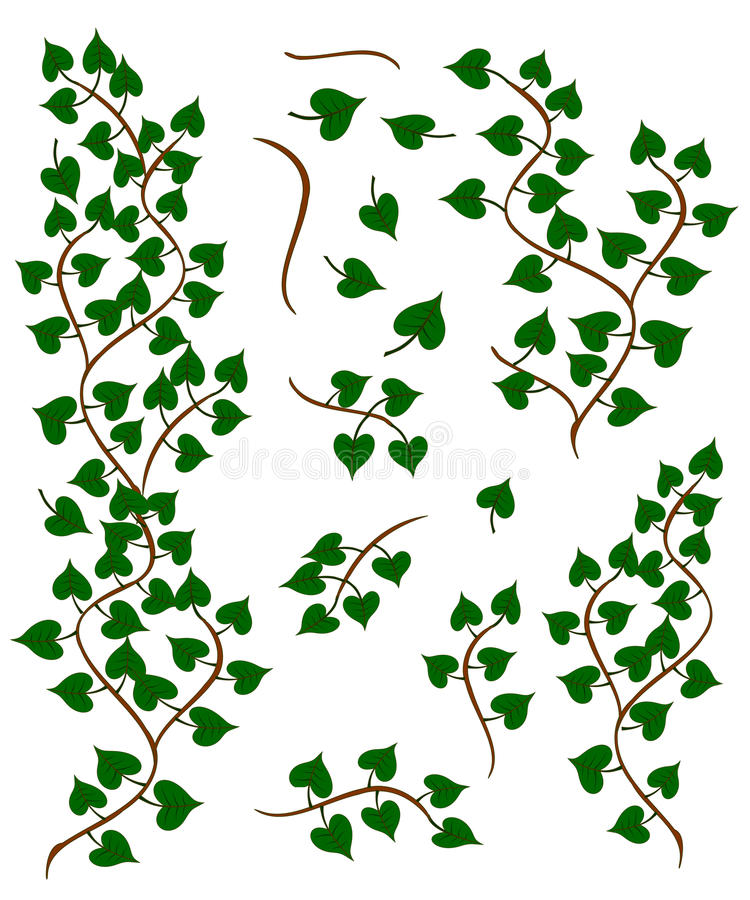 Download Leafy Tree Branches Collection Stock Vector - Image: 23203969