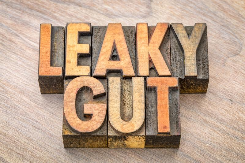 Leaky gut word abstract in wood type. Leaky gut word abstract in vintage letterpress wood type printing blocks royalty free stock images