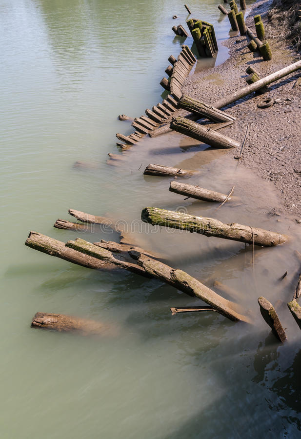 Leaning Log Piles