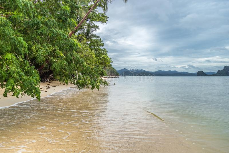 Leaning trees above the sea and the beach, rainy day. El Nido, Palawan, Philippines. August 2018. Leaning trees above the sea and the beach, rainy day. El Nido stock photo