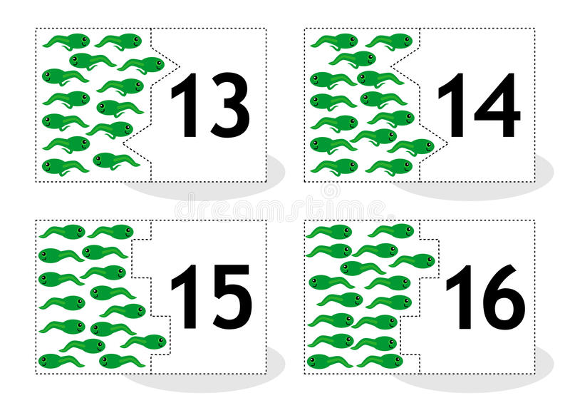 Learn counting puzzle cards, newts and tadpoles, numbers 13-16 royalty free illustration