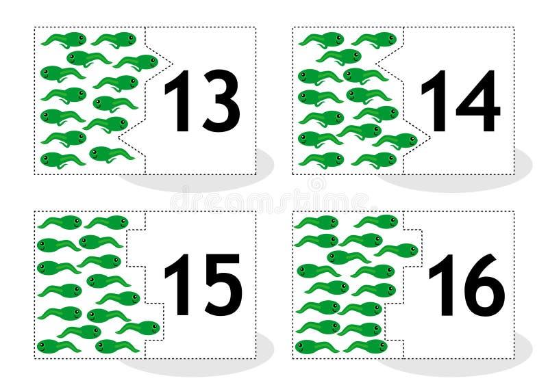 Learn Puzzlespielkarten, Newts und Kaulquappen zählend, nummeriert 13-16 lizenzfreie abbildung