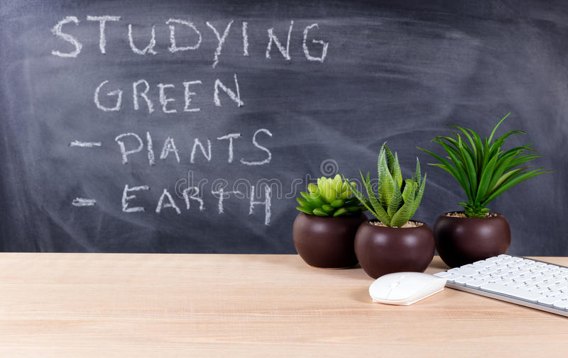 Learning about green topics in classroom environment with blackboard in background. Classroom desktop displaying keyboard, mouse and plants with blackboard stock images