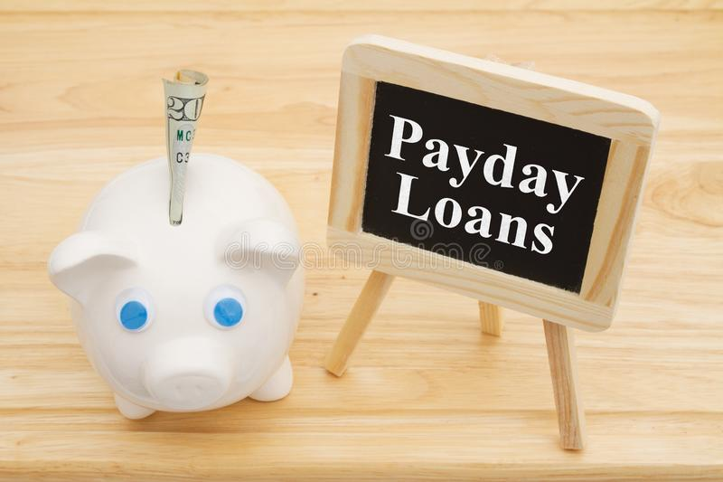 Learning about payday loans with a piggy bank stock photos