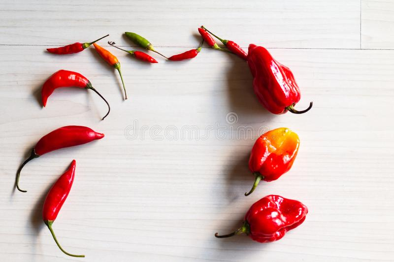 Fresh red Chilli peppers on the table. stock images