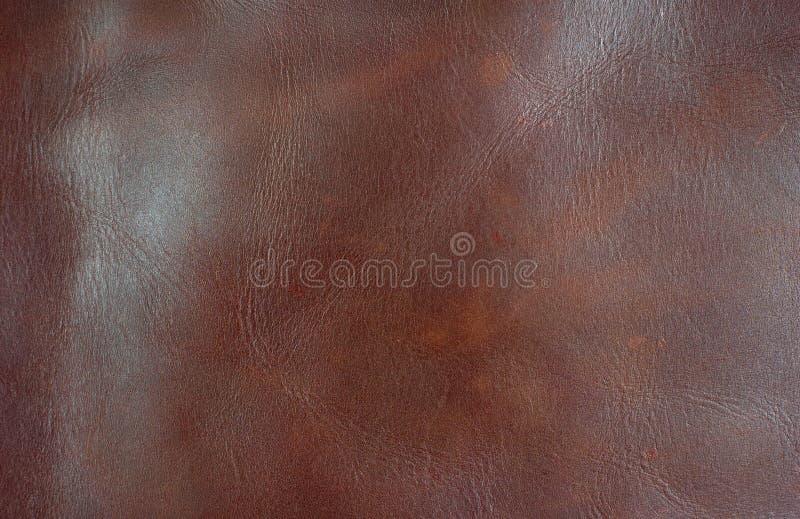 Leather2 royaltyfri fotografi