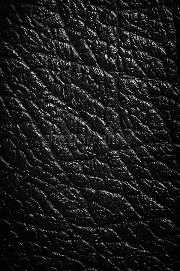 Leather Background. Black leather texture or background. Close up, top view stock images