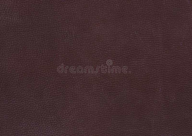 Leather Background texture. Shoot of the Leather Background texture royalty free stock photo