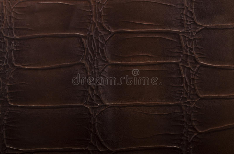 Leather brown embossed texture. Dark leather texture as background stock photography