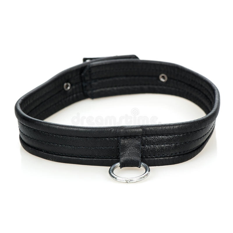 Download Leather Collar stock photo. Image of buckle, grey, dominatrix - 27910318