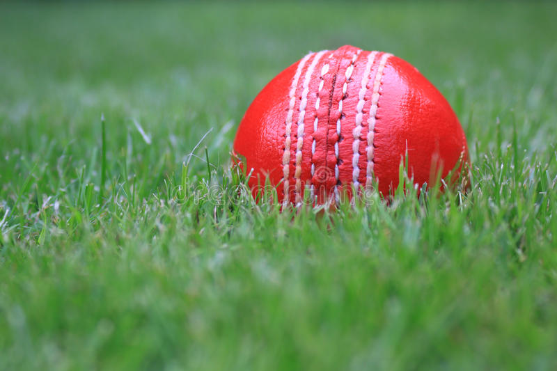 Leather Cricket Ball royalty free stock image
