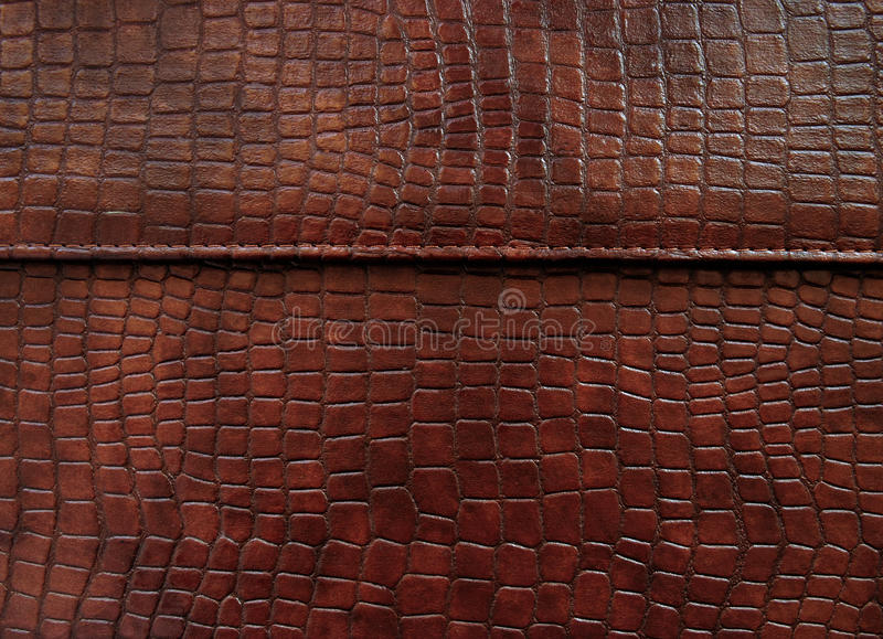 Download Leather With Crocodile Dressed Texture. Stock Photo - Image of print, dressing: 18887186