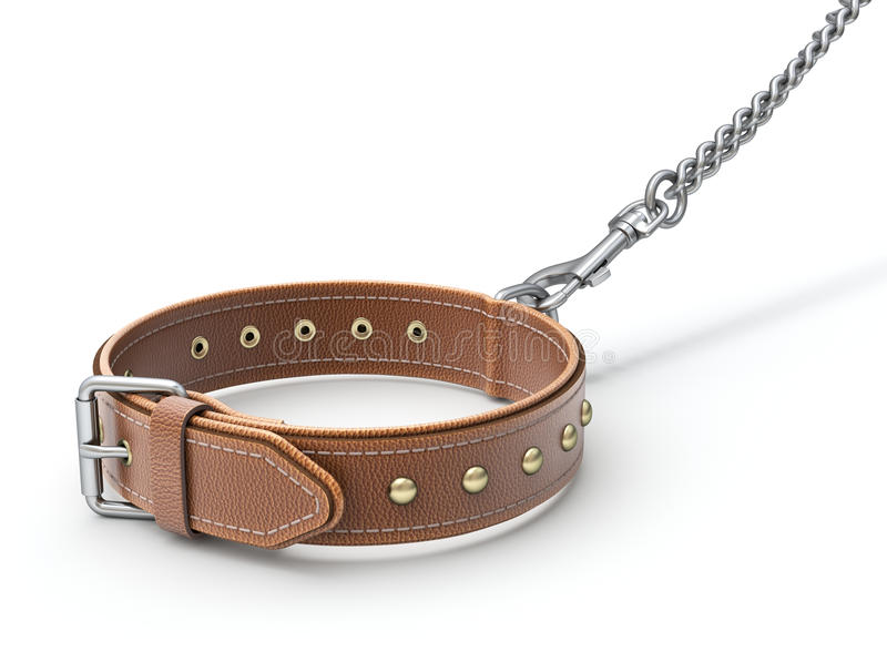 Leather dog collar stock photography
