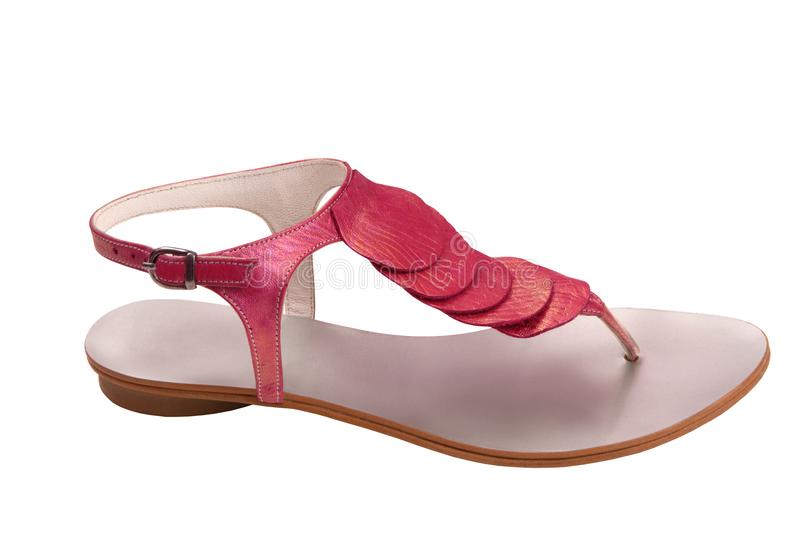 Leather female sandals is on white stock photography