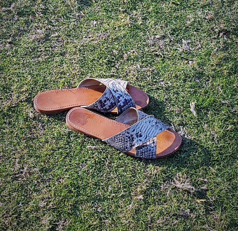 Leather flip-flops on the grass. royalty free stock photos