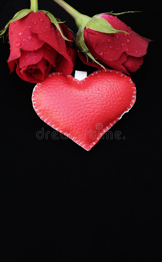 Leather heart with red roses. Leather heart with red roses for valentine day stock image