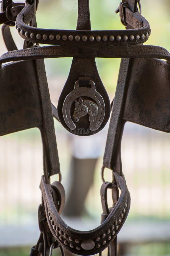 Horse bridle close up stock photos