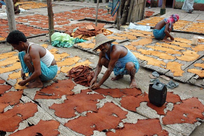 Leather industry of Kolkata