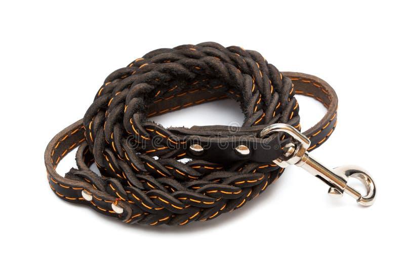 Leather leash stock image