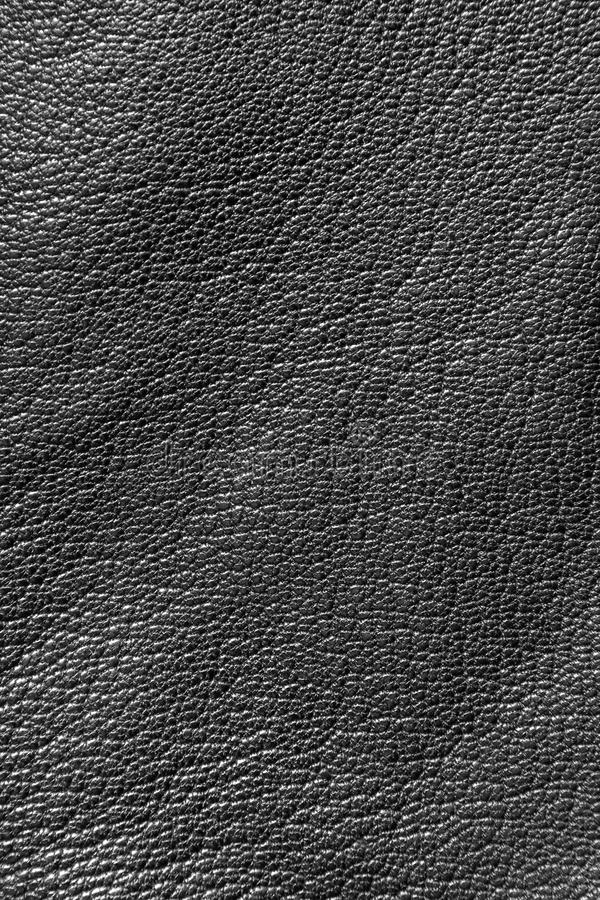 Download Leather texture stock image. Image of texture, waterproof - 13192217