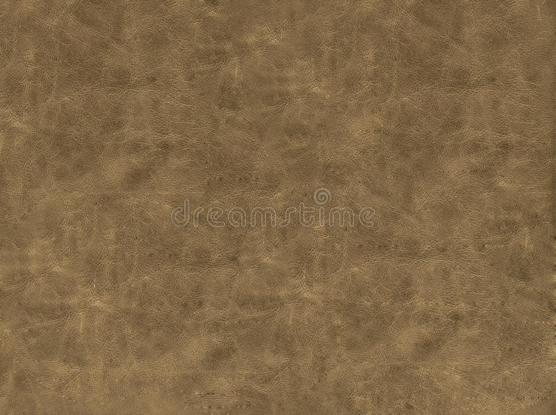 Leather texture. Of brown color stock photos