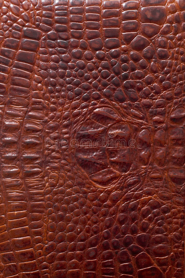 Leather texture. Alligator skin folder. Good for background image advertisements, 3d-mapping