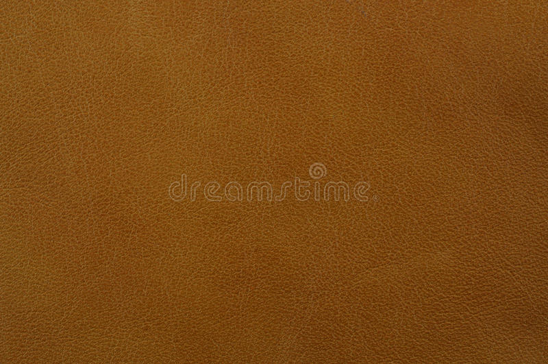 Download Leather texture stock image. Image of background, artificial - 20780819