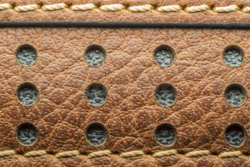 Download Leather Texture stock photo. Image of expensive, half - 25314532