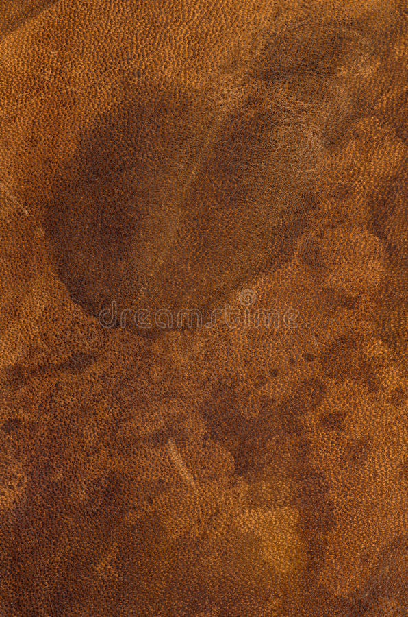 Leather texture. A brown leather texture background stock photography