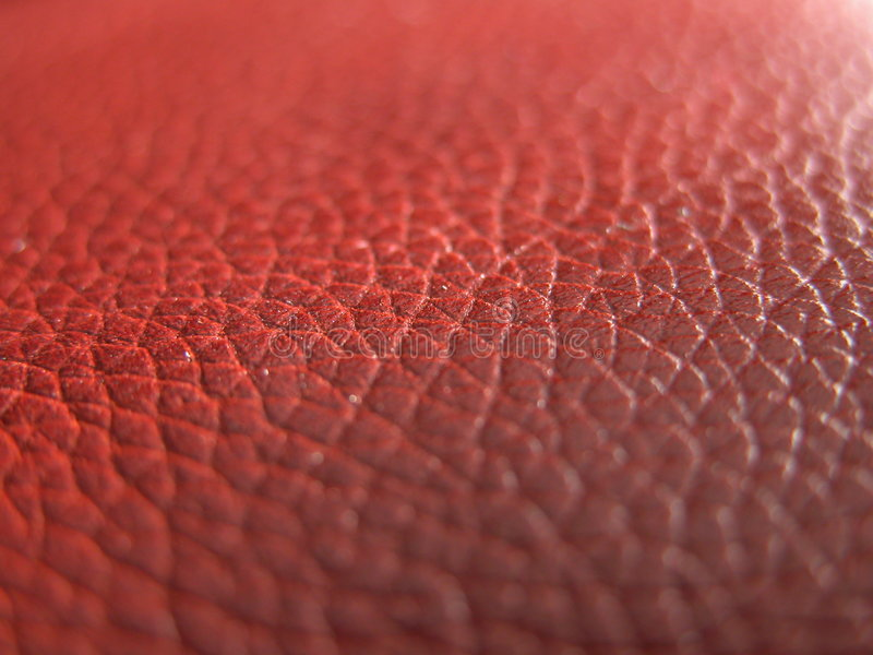 Download Leather texture stock image. Image of skin, material, seats - 56803